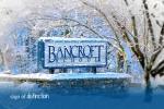 班克罗夫特中学-Logo,Bancroft School -logo