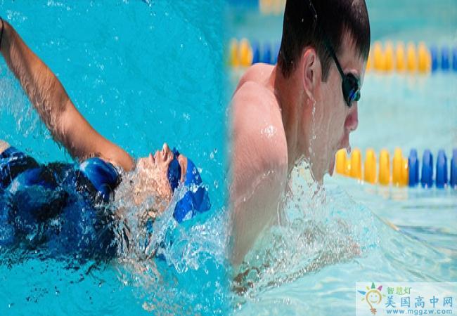 San Domenico School- 圣多米尼克高中-San Domenico School的游泳比赛