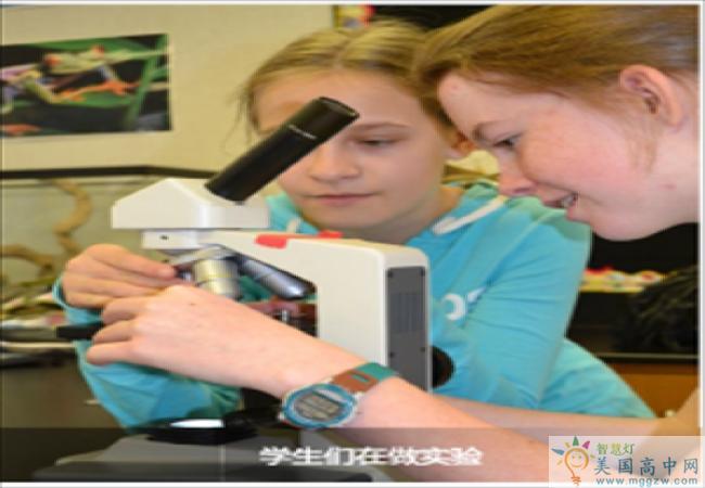Atlanta Girls School-亚特兰大女校中学-Atlanta Girls School的在做实验的学生.png