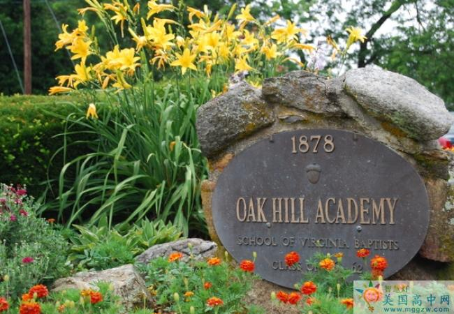 Oak Hill Academy-橡树山中学-Oak Hill Academy的学校标识
