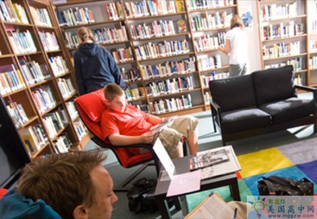 Thornton Academy -桑顿中学-Thornton Academy的图书馆
